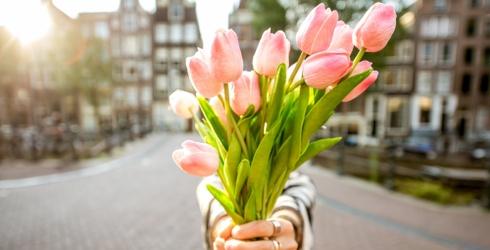 This Tulip Memory Match Is Tu-Lit to Quit