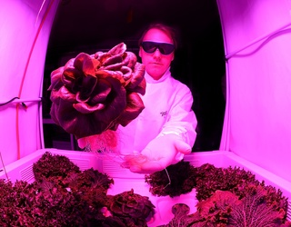 NASA Astronaut's Tweet Proves There Will Be Salads When We're All Living in a Space Colony