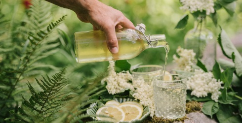11 Cool Elderflower-Infused Cocktails for Hot Summer Nights