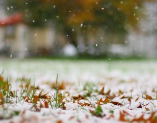 Monday Memory Madness: Welcome December by Matching These First Snow Photos