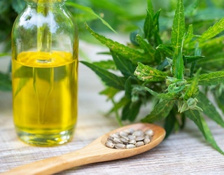 Ease Your Anxiety With the Best CBD Oils on the Market