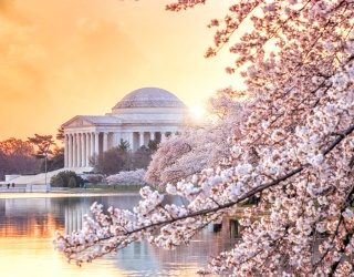 Travel Tuesday: Tips to Help Get the Most From a Washington, D.C. Family Trip