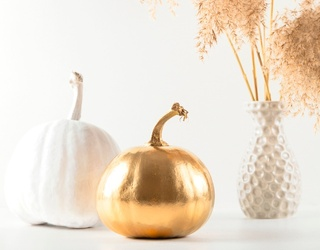 Everything's Coming up Gold (Pumpkins) in This Memory Match