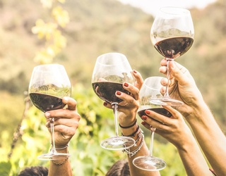 Which Wine Fits Your Summer Sipping Plans?