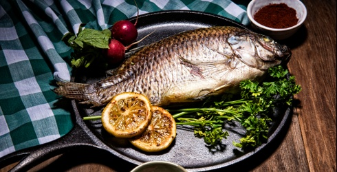 Impossible Foods Is Looking Into Fishless Fish, and We Have Questions
