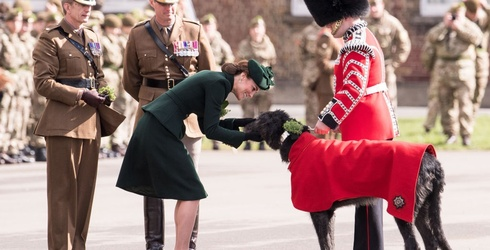 Royally Speaking: Kate Middleton and a Dog Named Domnhall at the St. Patrick's Day Parade