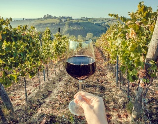 Travel Tuesday: Complete This Quiz and We'll Send You on a Wine-Tasting Trip