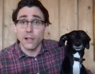 Good Morning to This Dog Who Crashed an Interview
