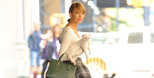 Cat Lady Goals? Find the Differences in These Photos of Taylor Swift and Olivia the Cat