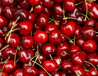 Pit Yourself Against This Cherry Memory Match