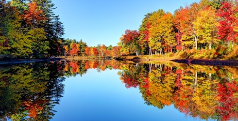 Travel Tuesday: Looking for Fall Foliage? Here Are 8 Places Other Than New England to Find the Colors