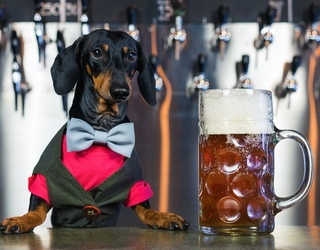 Unscramble This Dapper-Looking Bartender & Beer Puzzle