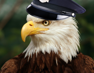 It Somehow Took Dutch Police an Entire Year to Realize That Drone-Hunting Eagles Are a Bad Idea