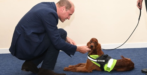 Prince William Thanks Tara the PTSD Service Dog With Good Pets