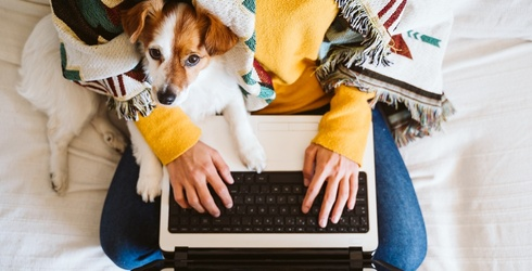 How to Ease Your Pandemic Puppy's Separation Anxiety