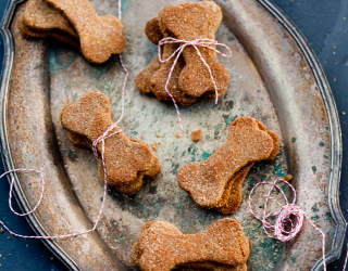 9 Ways to Make Your Own Dog Treats From Scratch