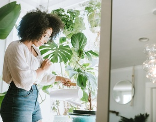 5 Houseplants to Try if You Can't Even Keep a Succulent Alive, Because They're Good For You