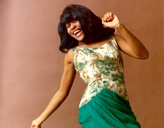 The Queen of Rock 'n' Roll Turns 80! Match the Tina Turner Lyric to the Soulful Single