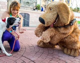 These Photos of Service Dogs at Disney Will Melt Your Heart