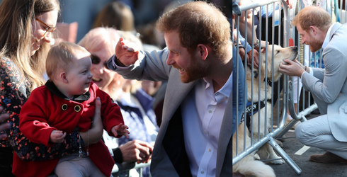 Bless These Photos of Prince Harry Cuddling a Dog AND Shielding a Baby's Eyes From the Sun's Glare