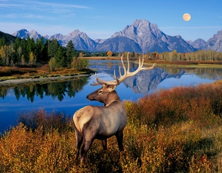 Which National Park Should You Visit?