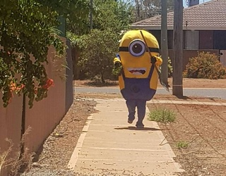 Larger Than Life Minion Terrorizes Man by Destroying His Freshly Landscaped Yard
