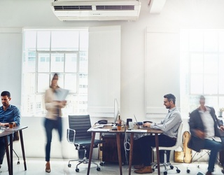 Unpopular Opinion: Office Jobs Are Not as Cushy as They Seem