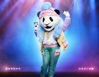"""Sadly, the Big Reveal Is Not in This """"Masked Singer"""" Memory Match"""