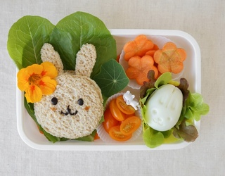 Are This TikToker's Lunchbox Meals Super Creative or Super Extra?