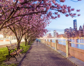 Monday Memory Madness: A Helpful Reminder That Despite Quarantine, Spring Has Indeed Sprung