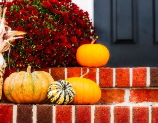 How Many of These Decor Pumpkins Will Spice up Your Life?
