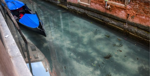 Venice's Crystal Clear Canals Are Evidence of How We May Help Fight Pollution