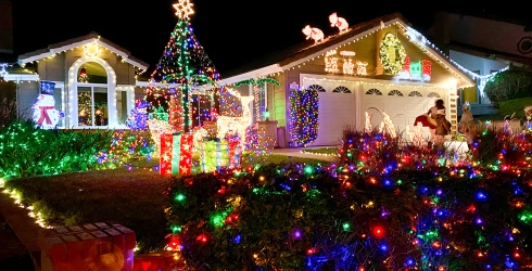 We've Seen a Lot of Holiday Light Shows...but None Like These Arguing Christmas Trees