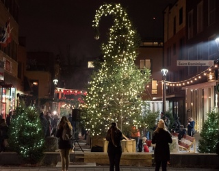 Montreal Embraces 2016's Ugly Christmas Tree Flop, Opens up an Entire Ugly Christmas Tree Village This Year