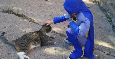Step Aside Avengers, This Boy Saving Stray Cats Is the Only Super Hero for Me