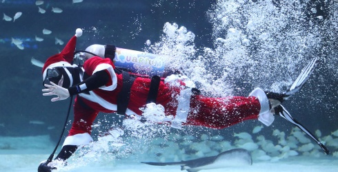 Dive Into the Holiday Season With Scuba St. Nick