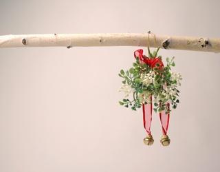 Cabinet of Curiosities: The Surprising Pagan Origins of Kissing Under the Mistletoe