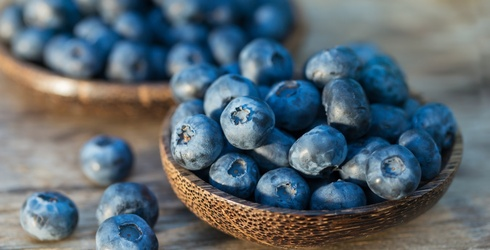 Violet, You're Turning Violet! Do You Know All These Blueberry Facts?