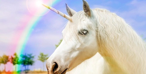 """Starbucks Barista's Fury: """"I Have Unicorn Crap All in My Hair and on My Nose"""""""