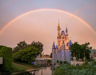 19 Exciting and Magical Things to Try and Taste at Disney in 2020