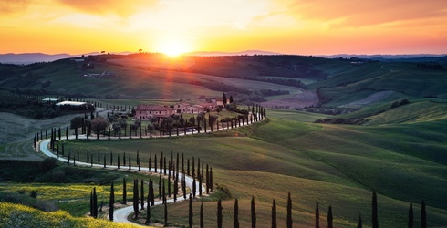 Top 10 Travel Destinations for Every Wine Lover