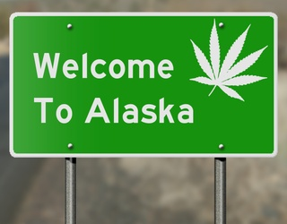 This Week's Great GIF Rundown: Alaska Legalized Cannabis Cafes & 2018 Spared Jimmy Carter
