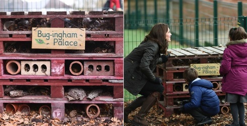 Bug-ingham Palace Is Further Proof That EVERYTHING In the UK Is a Palace of Some Sort