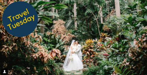 """These Wedding Photographers Travel All Over the World to Capture People Saying """"I Do"""""""