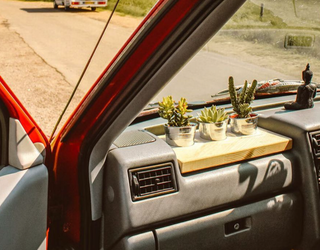 Have You Tried Cardening Yet, the Most Ridiculous Car Garden Trend?