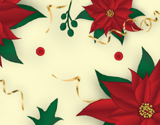 Can You Point out the Differences in These Poinsettia Photos?