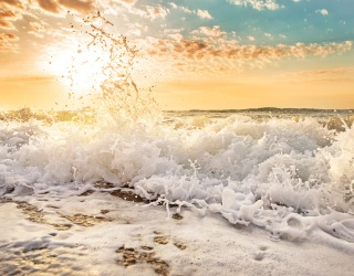Feel the Pull of the Tide While You Piece Together These Crashing Waves