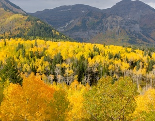 Escape to Mountains of Utah With This Richly-Colored Puzzle