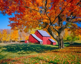 Instagram Account Captures New England's Unrivaled Fall Beauty