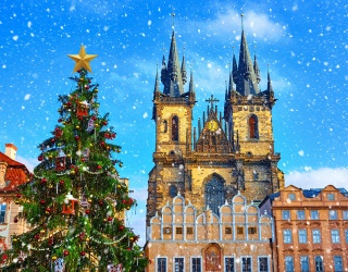 Travel to Prague's City Center to Find the Differences in These Tree-Lighting Photos